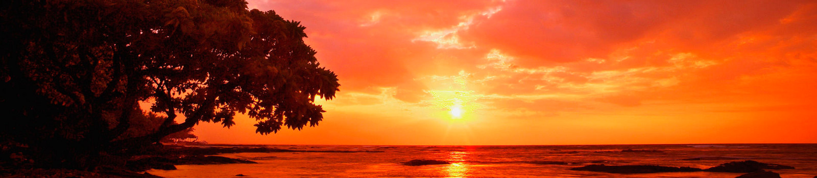 sunset_tropical